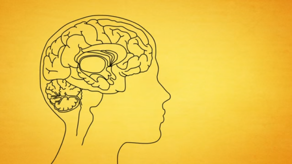 Prolonged sleep or more than 9 hours of sleep can be an early marker of neurodegeneration. (YouTube)