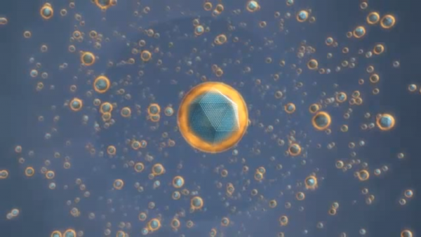 The nanoparticle was able to produce a potent anti-tumor immune response against HER2-positive breast cancers. (YouTube)