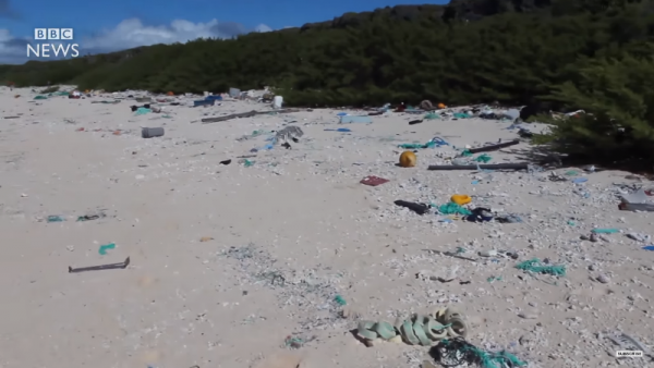 Henderson Island is polluted with approximately 37.7 million pieces of plastic. (YouTube)