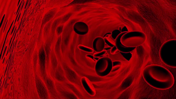 "Two new recent studies took a step closer in the development of ""limitless artificial blood supply."" (YouTube)"