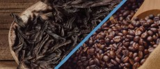 Coffee beans and dried tea leaves are being compared with each other.