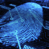 The study examined around 8,200 partial fingerprints for the potential prints MasterPrints using a commercial fingerprint verification software. (YouTube)